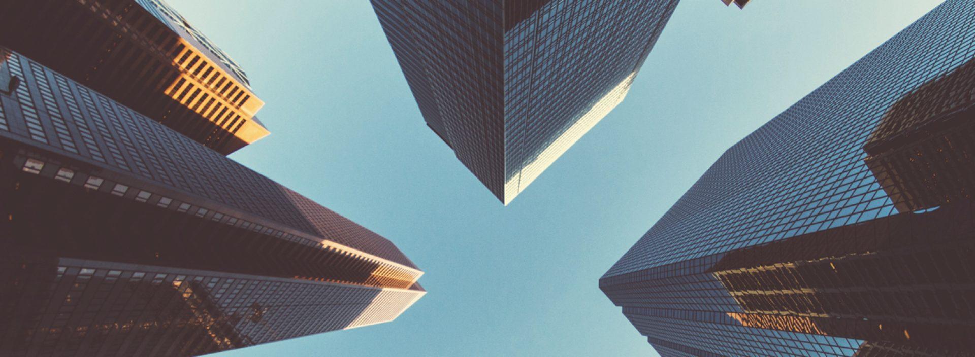Elevate Human Capital